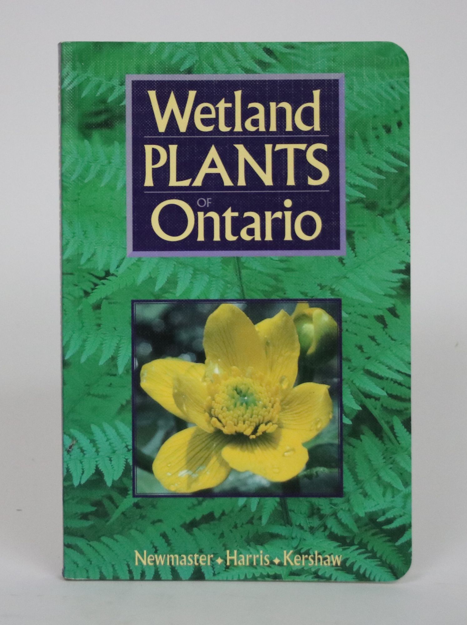 Wetland Plants of Ontario