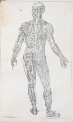 Class-Book of Physiology; For the Use of Schools and Families. Comprising The Structure and Functions of The Organs of Man, Illustrated By Comparative Reference to Those of Inferior Animals.